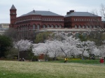 Smithsonian in Bloom